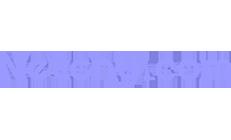 Netser - Our Partner